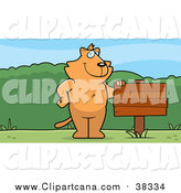 Cartoon Clip Art of a Ginger Cat Standing Upright Beside a Blank Wood Sign Outdoors by Cory Thoman