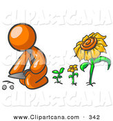 Vector Clip Art of an Orange Businessperson Kneeling by Growing Sunflowers to Plant Seeds in a Dirt Hole in a Garden by Leo Blanchette